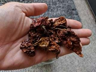Dried Chocolate bhutlah pods (5 grams)