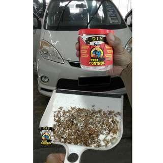 Car Fumigation Cockroaches