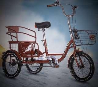 🚚 Adult sized Tricycle for sale!