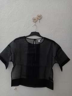 H & M sheer mesh top
