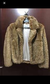 Jaket winter original