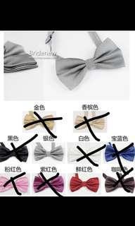 BN Silver bow tie