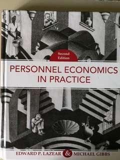 HE4015 Personnel Economics in Practice