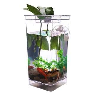 betta guppy goldfish my fun fish tank good for kids learning to take care of fishes