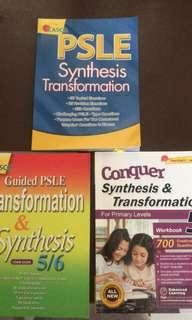 Primary 5 Synthesis and Transformation