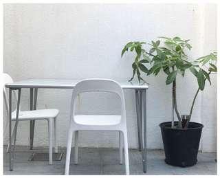 Ikea強化玻璃枱面及意大利制纖維餐椅4張