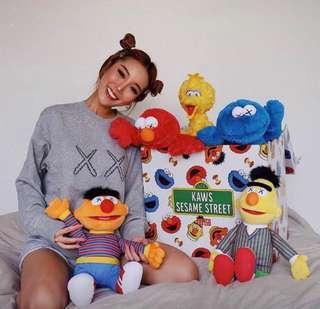 Uniqlo x KAWS x Sesame Street 芝麻街公仔 Elmo Cookie Monster Big Bird Bert Ernie