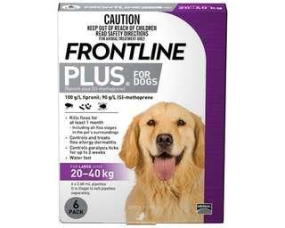 Frontline Plus (20-40kg Dogs) - New packaging new stock!
