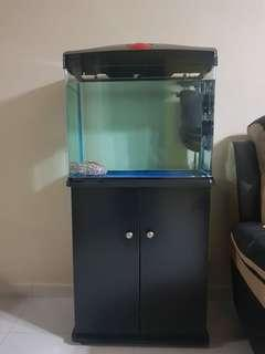 Fish tank 2ft comes with cabinet rack