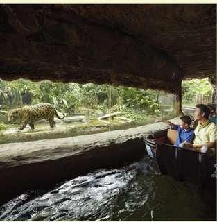 🚚 River safari wt boat (child physical tickets)