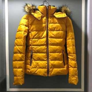 Zara Women Winter Jacket (Size S) with removable Hoodie
