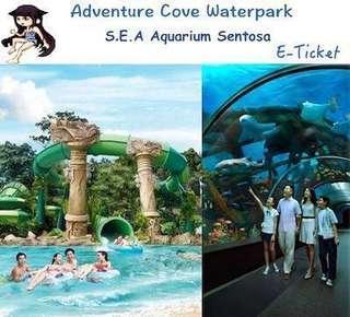 SEA & Waterpark $40