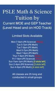 PSLE Math & Science Tuition by MOE Teacher