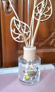 Bottle diffuser and stick