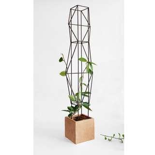 🚚 Plant support trellis