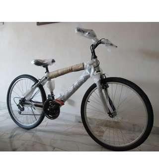 Mountain Bike 7 gears.