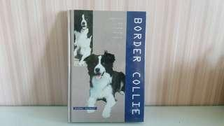 Border Collie   by Esther Verhoef