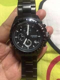 Fossil chrono