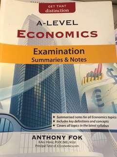 A level H2 economics Exam summaries and notes
