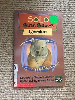 Solo Bush Baby Wombat