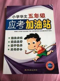 Pri 5 Chinese Assessment book