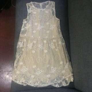 Zara Trafaluc Nude Embroidered Dress