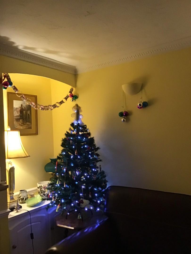 Christmas tree with light's