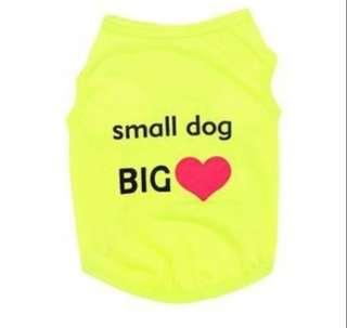 Statement wear for dogs