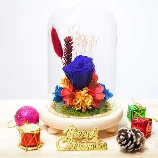 Christmas Preserved Flower Dome - Blue Rose