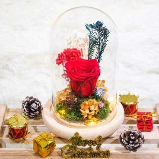 Christmas Preserved Flower Dome - Red Rose