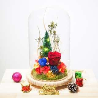 Grandeur Christmas Preserved Flower Dome