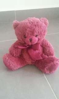 Teddy Bear - Toy