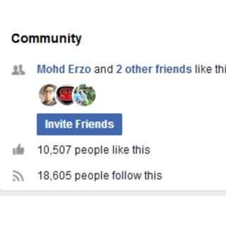 Facebook Fanpage Untuk Peniaga Online 10000 likes