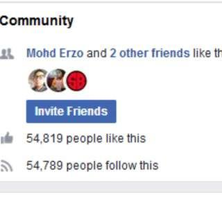 Facebook Fanpage Untuk Peniaga Online 54000 likes