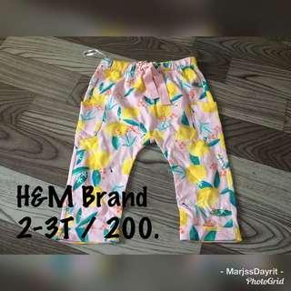 Brandnew H&M (2-3T)