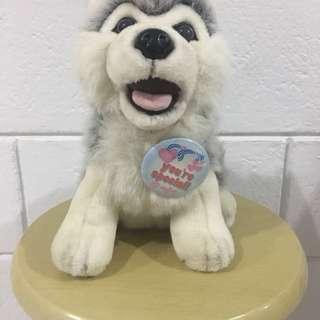 Preloved Husky Stuffed Toy (10 inches) with Pin