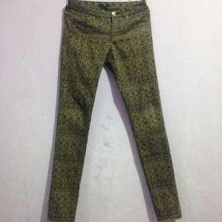 H&M patterned pants