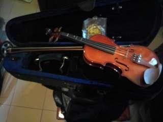 一減再減虎皮纹小提琴(Besd)由中國制造專供美國Hongxaun銷售