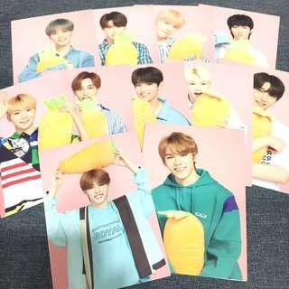 OFFICIAL SEVENTEEN IDEAL CUT IN JAPAN TRADING CARDS | Carrot