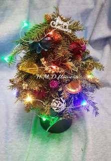 🚚 聖誕樹 禮物 乾燥花 居家裝飾