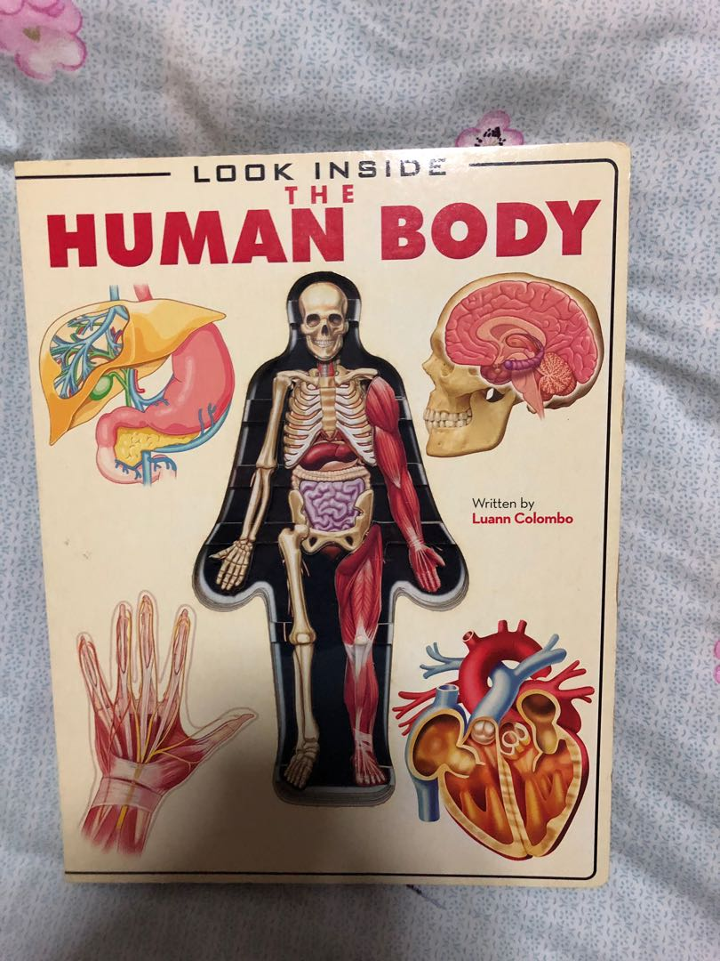Look Inside The Human Body Hardcover Book Books Stationery