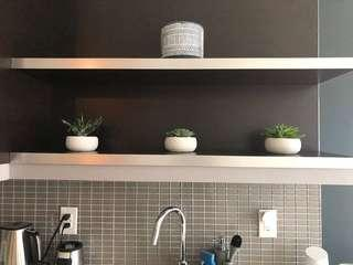 Barely used, 3 fake succulents and pots