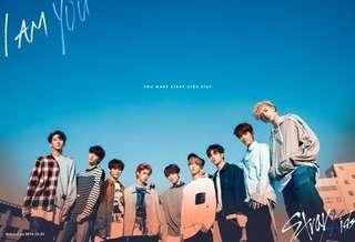 WTB/LTB Stray Kids Stuff