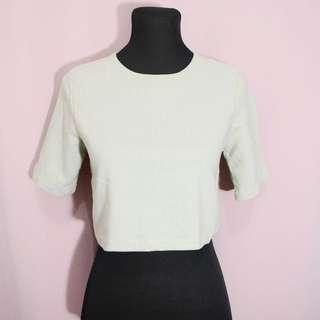 Pistachio green basic cropped top