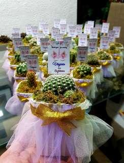 Cactus Customized party giveaways