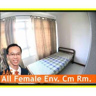 Nice Common Room for Rent in Ghim Moh Link. 8mins to Buona Vista MRT.