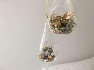 Hanging glass airplane holder