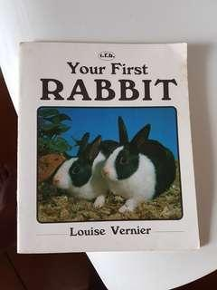Your First Rabbit