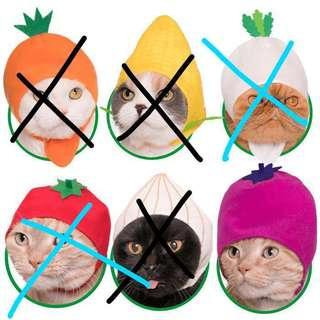 FREE MAIL Cat Hats / Cat Hood Hoodies
