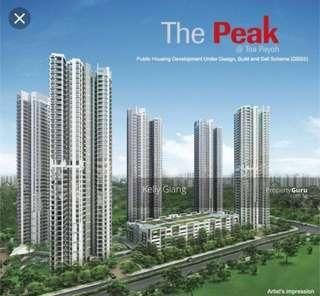 The peak Toa Payoh 4 room flat for rent 91sqm